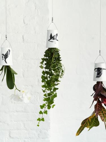 http://www.ploneres.pl/wiszace-doniczki-boskke-sky-planter.html