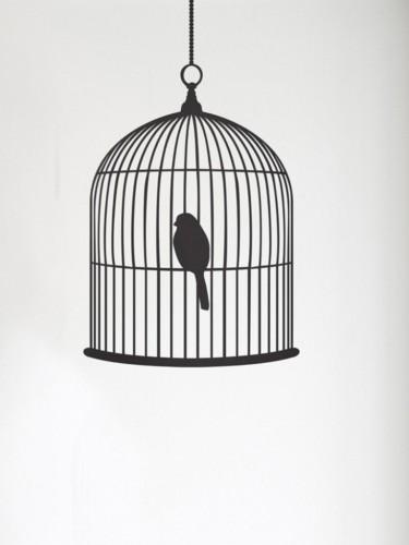 Naklejki ścienne - Klatka dla ptaków