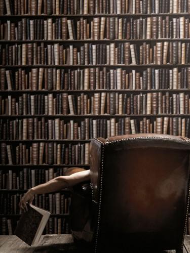 Koziel - Tapeta z motywem książek