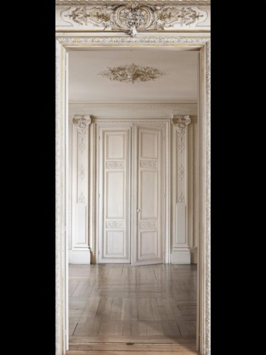 Dekoracja Haussmann Style Indoor Perspective