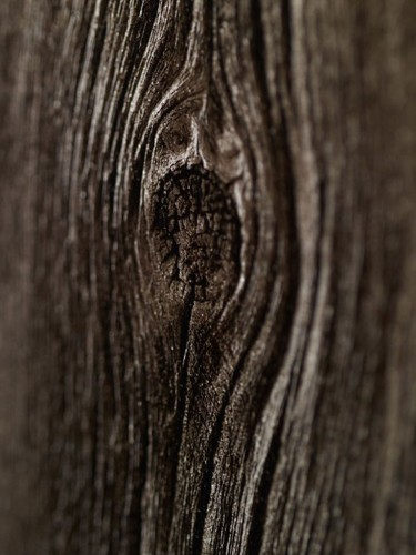 Tapeta ścienna - Drewno 10m