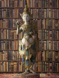 Andrew Martin - Tapety vintage - Biblioteczka