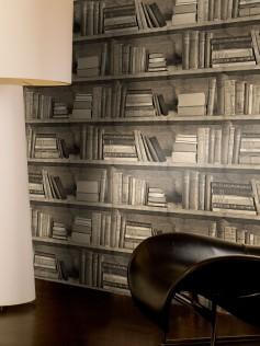 Tapety ścienne - Biblioteczka - Sepia