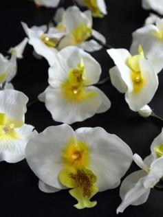 Sznur Lampek - Białe Kwiaty Orchidei