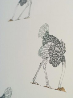 Beware the Moon - Tapeta Ostrich - Pencil 10m