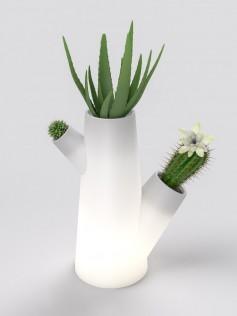 Donica na 3 roślinyz popielniczką - Kaktus