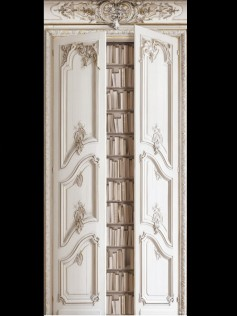 Dekoracja Double Doors with Haussmann Bookshelves