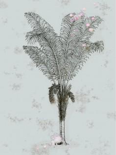 Elli Popp - Tapeta ścienna w palmy - Desert Grove