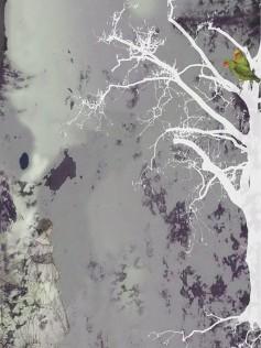 Elli Popp - Tapeta ścienna - Aurora Borealis