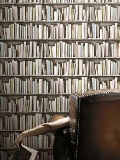 Koziel - Tapeta ścienna - Biblioteczka vintage