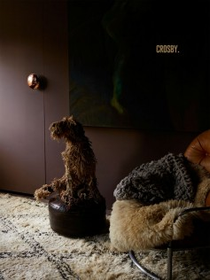 Abigail Ahern - Farba ścienna - Crosby