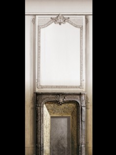 Dekoracja Fireplace with Haussmann Panelling