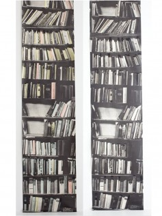 Tapety Deborah Bowness - Genuine Fake Bookshelf