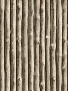 Tapeta postarzałe gałęzie - Christophe Koziel
