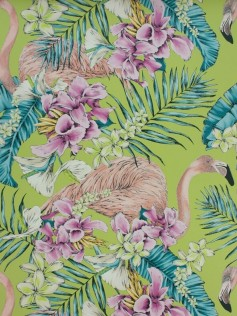Tapeta Matthew Williamson - Flamingo 10m